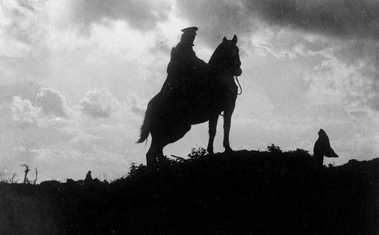 Animals in World War I (1)
